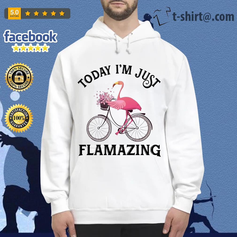 Flamingo riding bike today I'm just Flamazing Hoodie