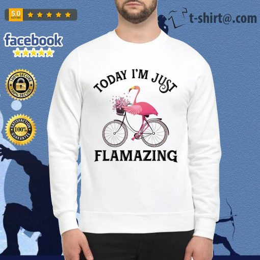 Flamingo riding bike today I'm just Flamazing Sweater