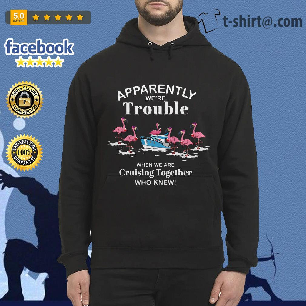 Flamingos apparently we're trouble when we're cruising together who knew Hoodie