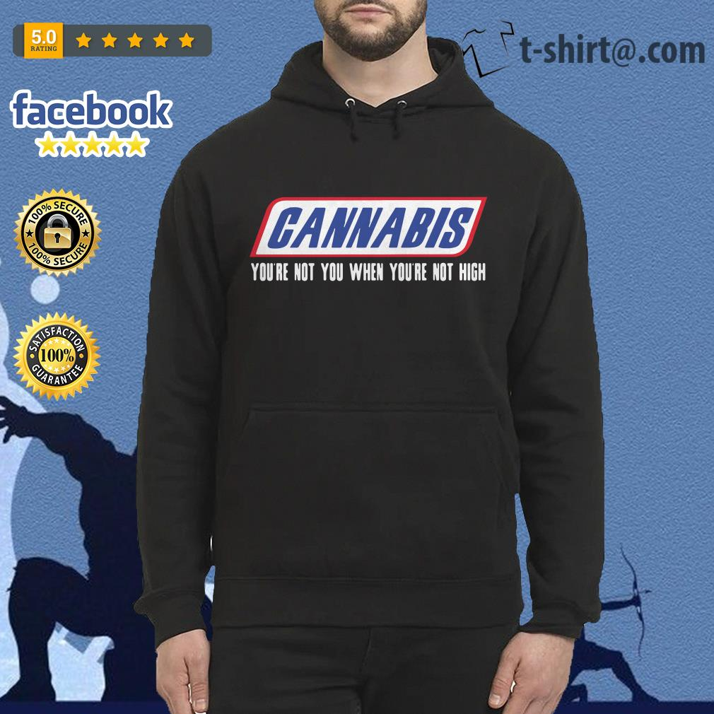Cannabis you're not you when you're not high Hoodie