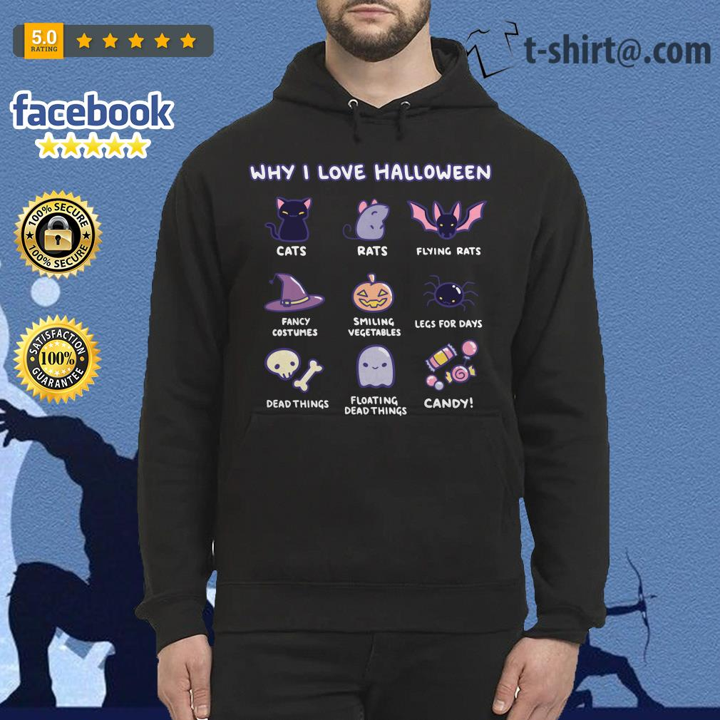 Why I love Halloween cats rats flying rats Hoodie