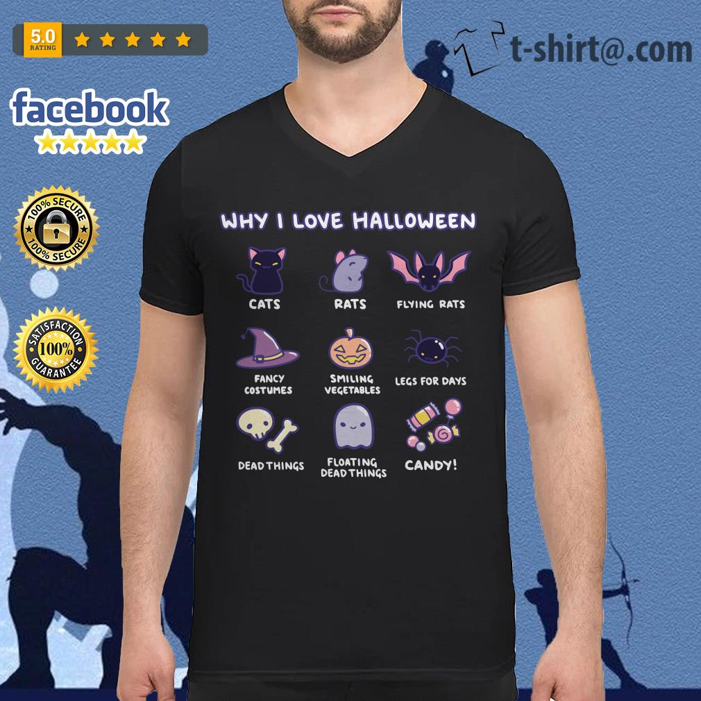 Why I love Halloween cats rats flying rats V-neck T-shirt
