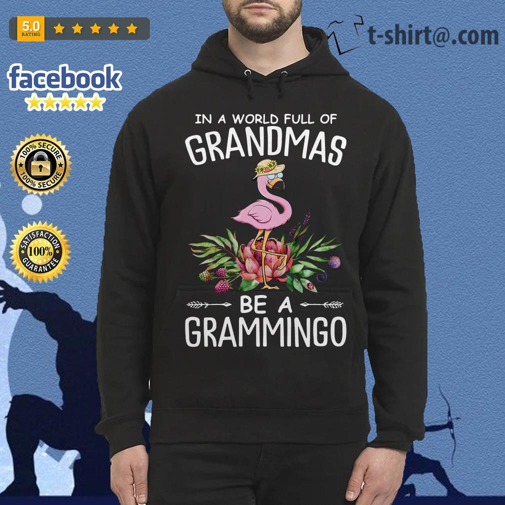 In a world full of grandmas be a grammingo Hoodie