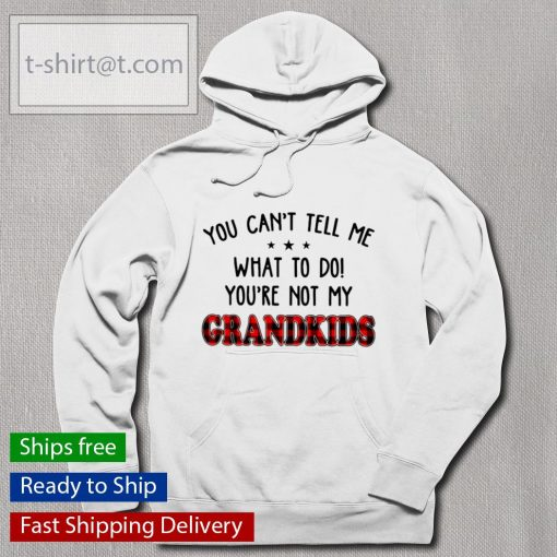 You can't tell me what to do you're not my Grandkids s hoodie